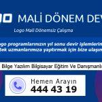 Logo Devir İşlemleri - Mali Dönem Bağımsız Devir